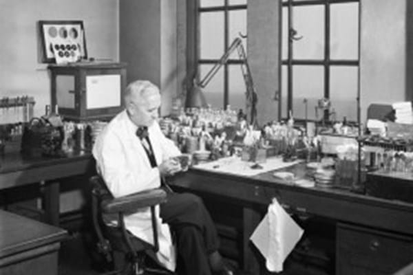 Alexander Fleming in his St Mary's lab in London